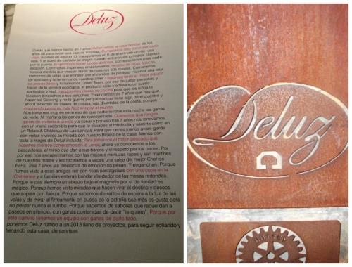 Deluz Manifesto