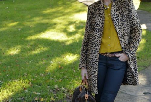 abrigo leopardo mango pantalones encerados negros hm camisa mostaza zara bolso speedy louis vuitton botines snake print zara animal print